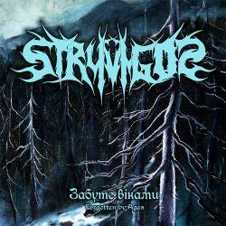 Stryvigor cover