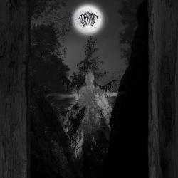 Taatsi Amidst The TreesCD